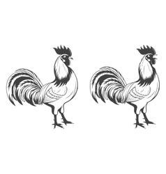 Roosters set symbol of 2017 vector