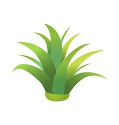 Icon plant vector