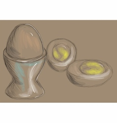 boiled egg vector image