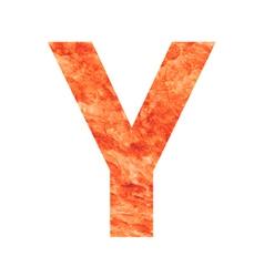 Y land letter vector