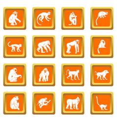 monkey types icons set orange vector image vector image