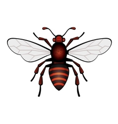 Red bee icon vector