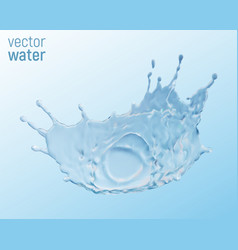 water crown splash isolated on transparent vector image vector image