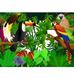 wild animal vector image