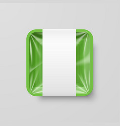 Empty green plastic food square container with vector