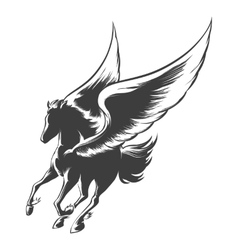 Engraving winged horse vector