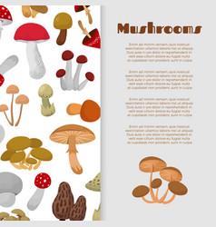 Fresh autumn mushrooms and toadstools vector