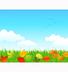 Autumn lawn vector
