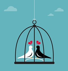 Birds in cage vector