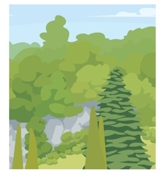 Forest trees vector