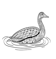 Swan swims on the water coloring for adults vector