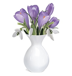 Bouquet of crocuses and snowdrops vector