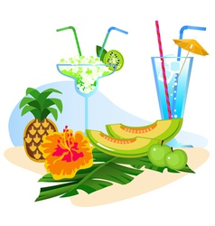 fruit  cocktails vector image