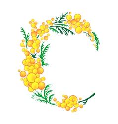 Abstract mimosa branch vector