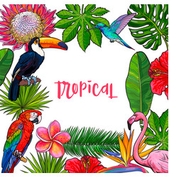 Banner with tropical palm leaves birds flowers vector
