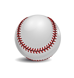 Baseball ball vector