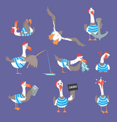 Cartoon seagulls with different poses and emotions vector