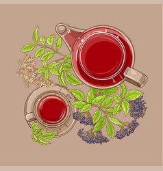 Cup of elderberry tea and teapot vector