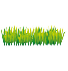 Lime green grass with leaves icon vector