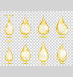 Transparent yellow drops vector