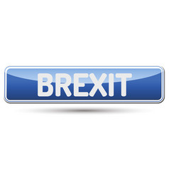 Brexit - abstract beautiful button with text vector