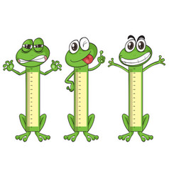 Height measurement chart with frog characters vector