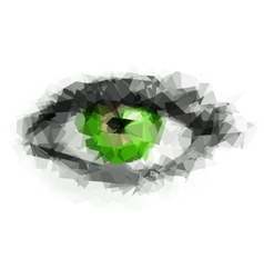 Female eye created from polygons vector