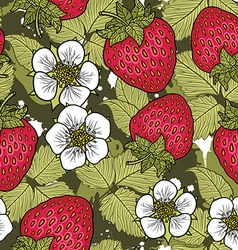 Strawberrypattern vector