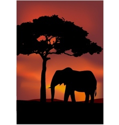 African sunset background with elephant vector