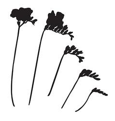 Freesia silhouettes vector