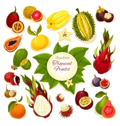 Tropical fresh fruits poster vector