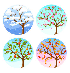 Four seasons of tree and landscape vector