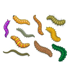 Cartoon worms vector image vector image