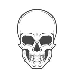 Human evil skull jolly roger logo template vector