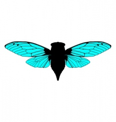 Beautiful cicada vector
