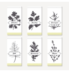Spicy herbs silhouettes collection hand drawn vector