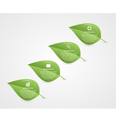 Abstract 3d leaf infographic nature concept vector