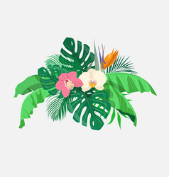 Composition of tropical leaves and exotic flowers vector