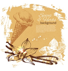Vintage background with hand drawn sketch herbs vector