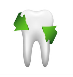 White tooth with two green arrow stomatology icon vector