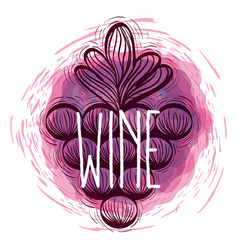 Wine grapes doodle round icon vector