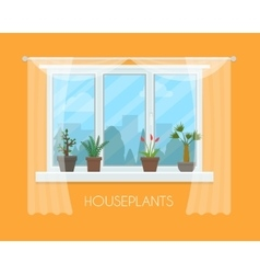 House plants in pots on window with a curtain vector
