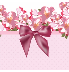Pink flowers bouquet card with shinny bow vector image vector image