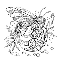 Wasp coloring book for adults vector image vector image