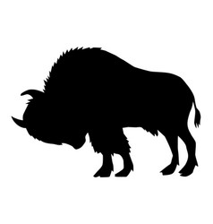 buffalo side view vector image vector image