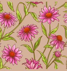Echinacea purpurea pattern vector