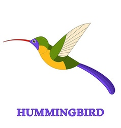 Hummingbird line art icon vector