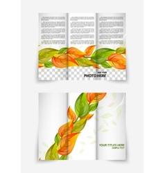 Trifold leaf brochure vector image