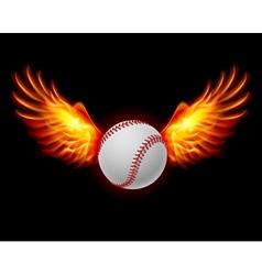 Baseball fiery wings vector