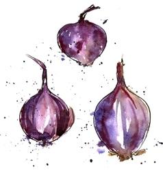 Watercolor purple onions vector